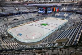 Eishockey-Länderspiel GER vs. CZE
