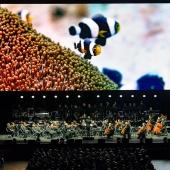Unser Blauer Planet II live in Concert